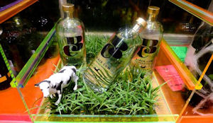 Du lait transformé en Vodka